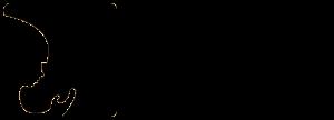 logo-2-300x108